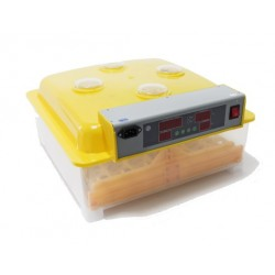 Incubadora Automatica 48 Huevos MQT