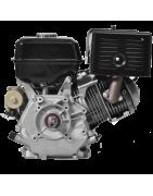 Motor Gasolina 13 Cv